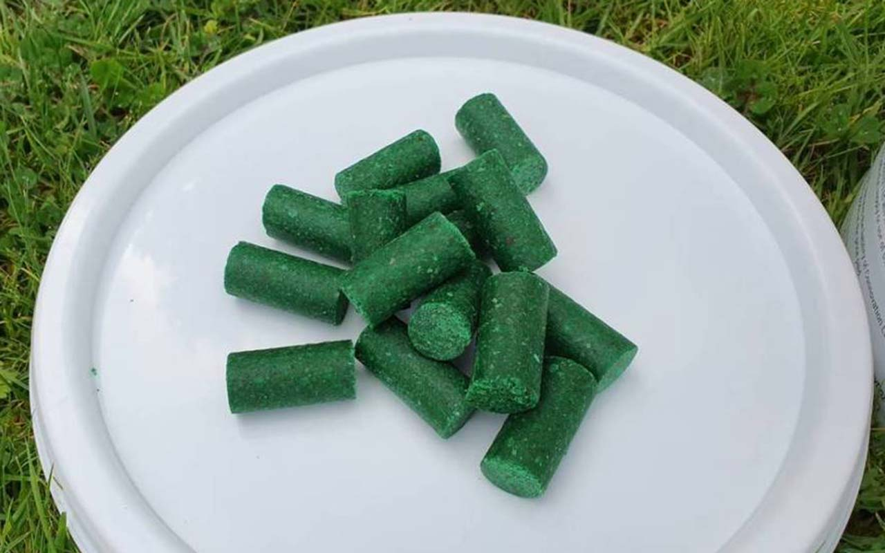 Green pellets of bait for rats and possums