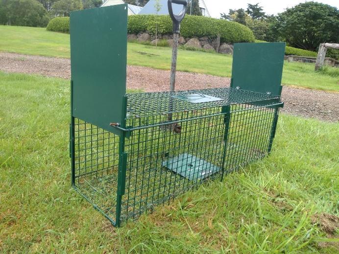 Basic Cage